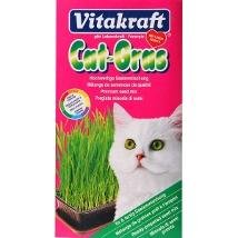 Cat Grass Erba Natural 24031